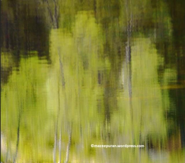 learnphoto16_7