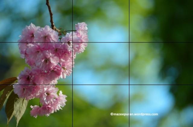 learnphoto22_11